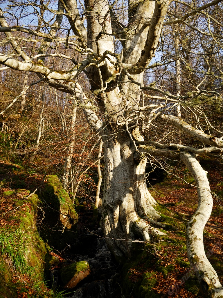 Sights in the east of Scotland